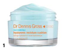 Dr Dennis Gross Hyaluronic Moisture Cushion