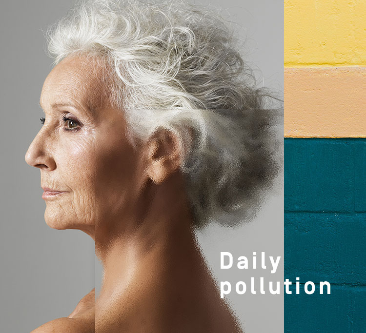 Daily Pollution