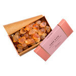 Bastide - POT POURRI FIGUE 700G
