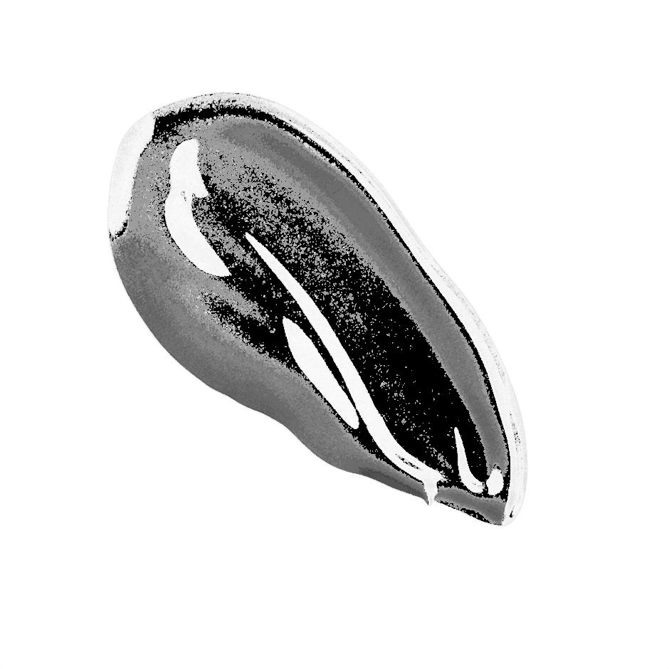 Argan Matchmaker Serum Foundation, Medium Dark, texture